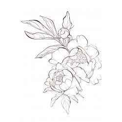"Glasbild "" Peony Flower"""