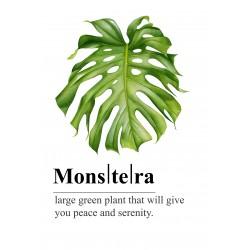 "Glasbild "" Monstera Grün"""